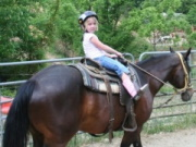 NC Cabin Specials, Vacation Packages and Discount tickets