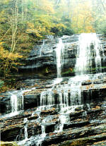Pearson's Falls in a pristine forest setting between Tryon and Saluda